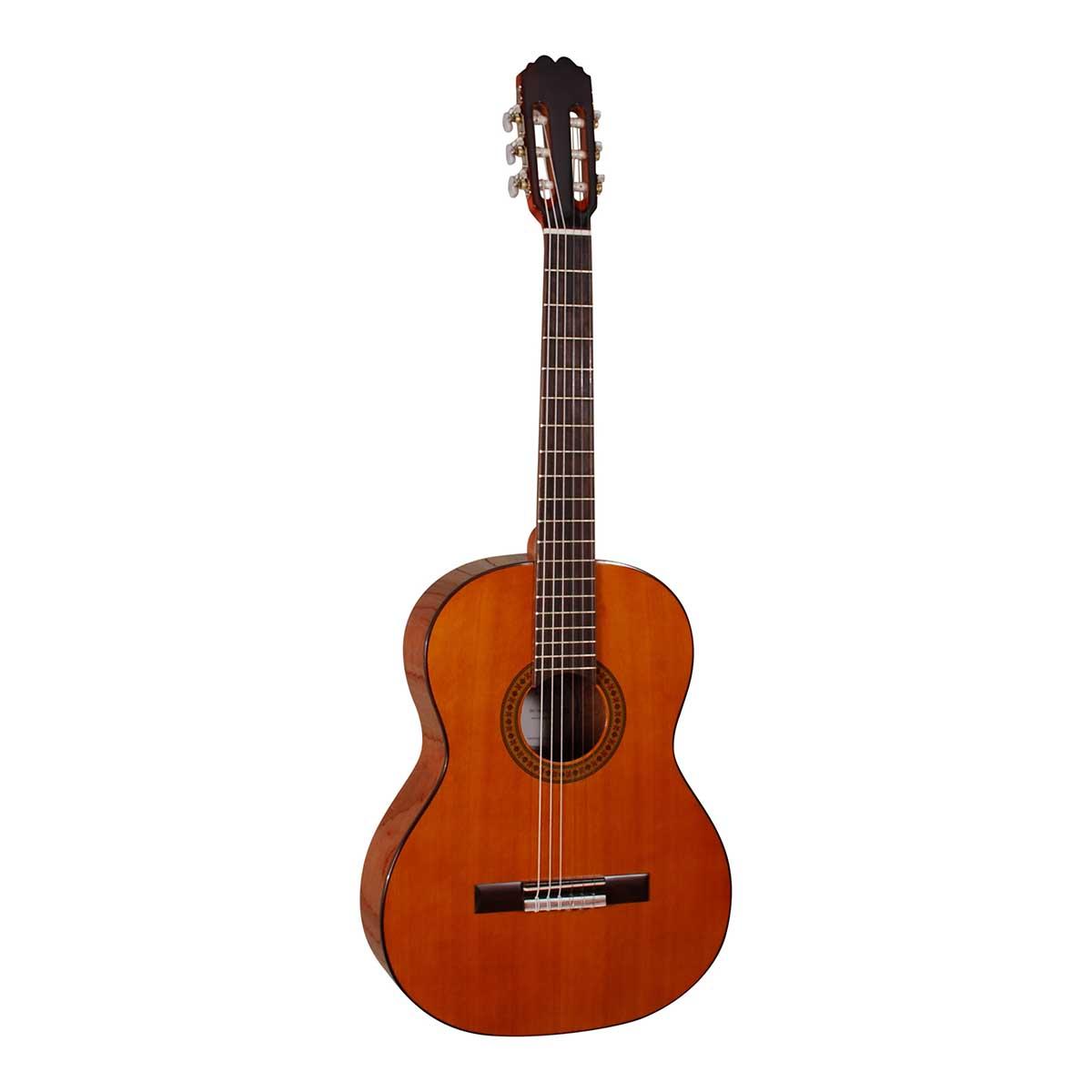 Santana DG-100 HG 4/4 spansk-guitar