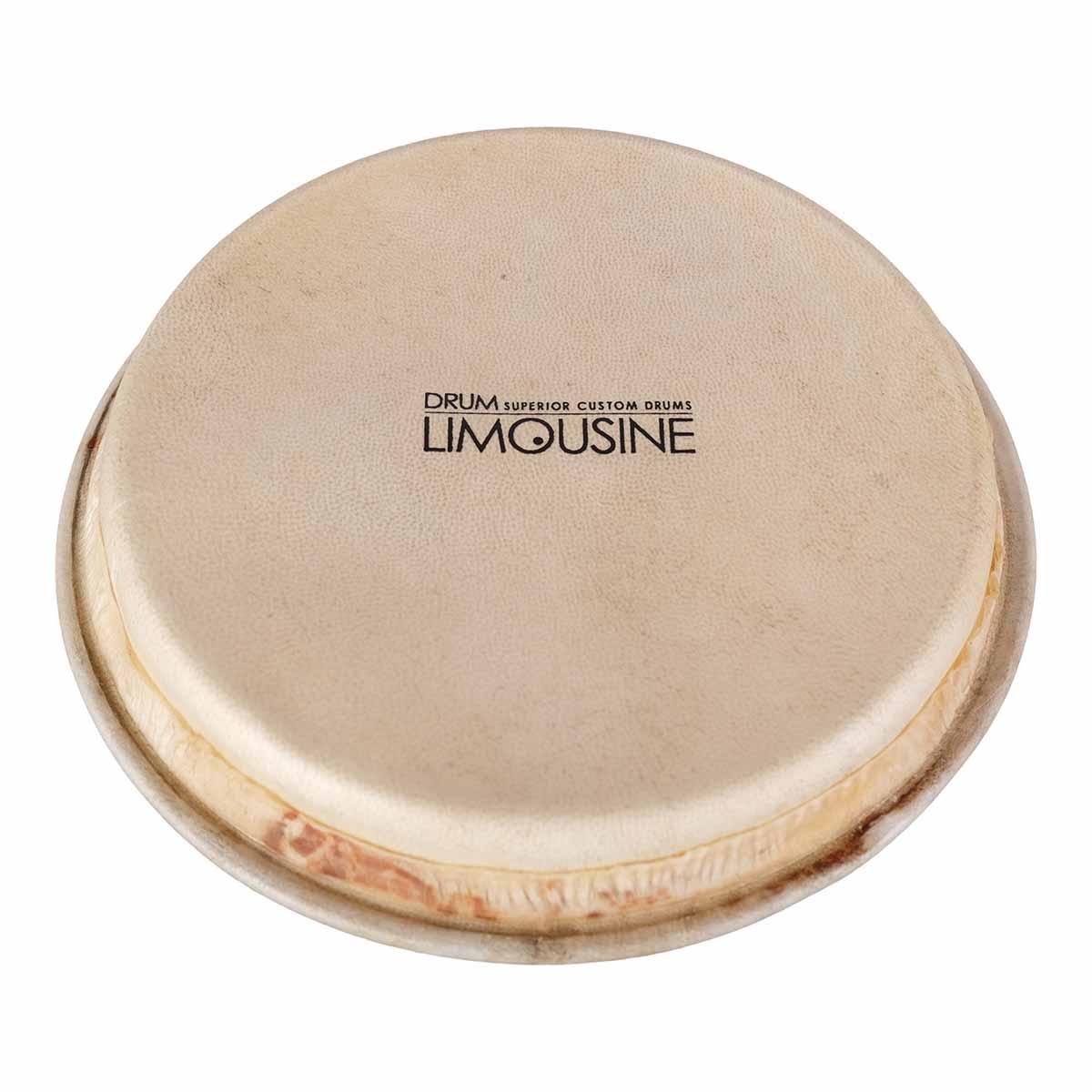"""Image of   Drum Limousine TD-HEAD7 skind til Traditional bongo, 7"""""""