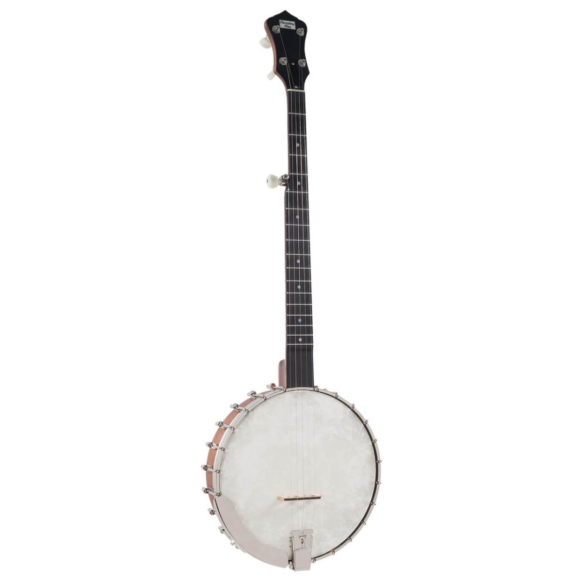 Recording King RK-OT25 BR banjo