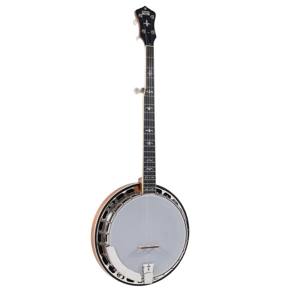 Recording King RK-R35 BR banjo