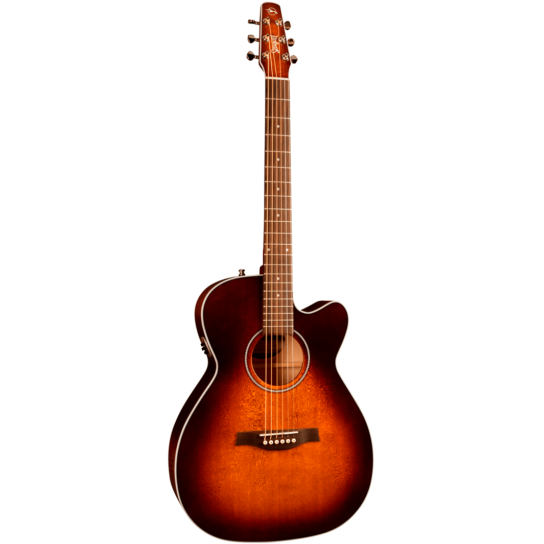 Image of   Seagull PerformerCWConcertHallQIT western-guitar burntumber