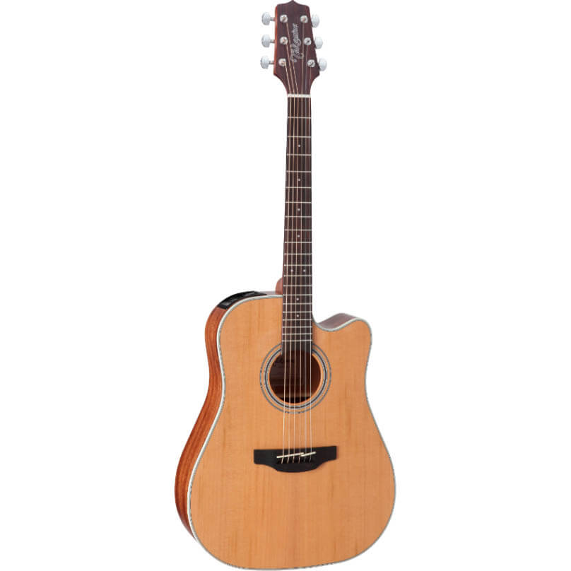 Image of   Takamine GD20CE-NS western-guitar