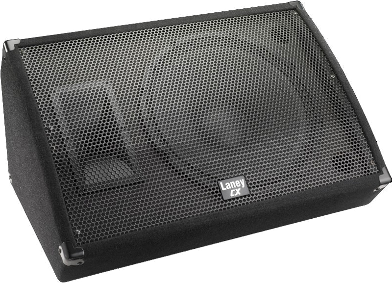 Laney CXM-115 monitor,15